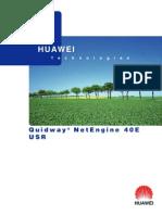 Quidway_NE40E