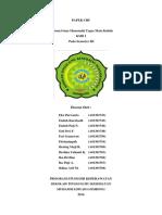PAPER CHF.docx