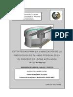 Estrategias Para La Minimización de Fangos Residuales en El Proceso de Lodos Activados