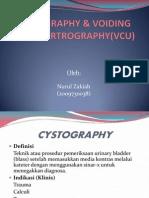 Cystography Nuii