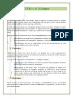 Riñones.pdf