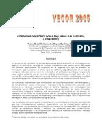 Corrosion Losacero 6