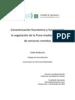 Caracterización Fisonómica y Funcional de La Vegetación de La Puna Mediante El Uso Sensores Remotos
