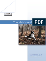 Your Guide to a Healthy Dog