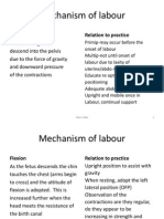 Mechanism of Labour