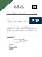09 Patologia de Las Glandulas Salivales