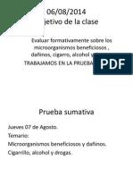 Prueba Formativa Cigarrillo a,d,Microorganismos