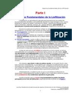 LIofiliz IndustrialI.doc