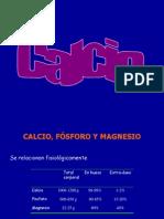 Calcio,Fosforoymagnesio 11081