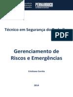 Caderno de Segurança Do Trabalho (Gerenciamneto de Riscos e Emergências)
