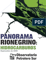 Panorama Rionegrino Pdf1(2)