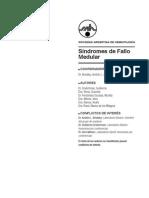 363-394.8.SAH_GUIA2012_FalloMedular (1)