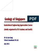 Rock Formation in Singapore