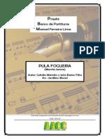 Portal.brasilsonoro.com Pula Fogueira