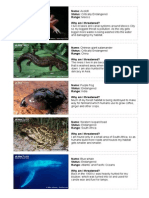 endangered species - 7-11 years - activity cards