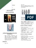 Compilado Endodoncia I