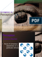 perceptionchp6-100309215930-phpapp02