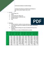 Deficiencia de Macro Nutriente en El Cultivo de Lechuga