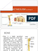 Physiology of Bone.pptx