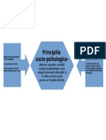 principii 3