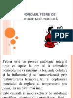 2. Sindromul Febrei de Etiologie Necunoscuta