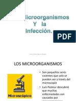 Los microorganismos y la infecci¢n
