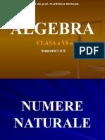 ALEBRA CLASA a VI-a