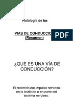 8-1- Fisiologia Vias de Conduccion Resumen