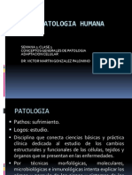 1.Patologia, Adaptacion Celular
