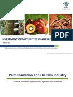 Perkebunan Palm Oil