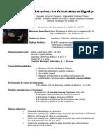 Curricula de Humberto Alcántara Zgaip