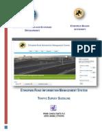 Traffic Survey Guide