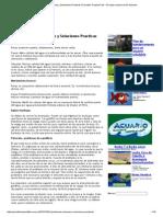 Problemas Comunes y Soluciones Practicas en Peces