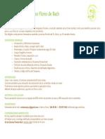 CURSO FLORES DE BACH.pdf