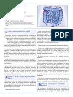 FOS Funciones de Los Fructo-oligosacáridos FIBRE INTESTINOS