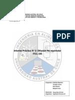 Informe N°2 Ingeniería Procesos IV