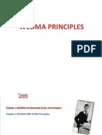 WCDMA Principles