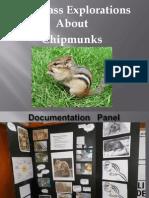chipmunk documentation panel