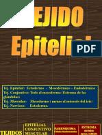 Epitelios-1