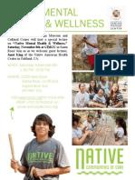 Native Mental Health & Wellness