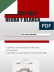 Metodos Caja Negra y Blanca