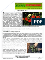 Strawberries Plant Nutrition Notes