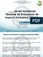 Presentacion Clase SEIA 2.pdf