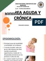 Diarrea Aguda y Crónica