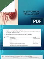 Insuficiencia Renal Aguda1 (1)