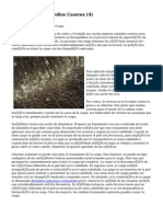Article   Caspa Remedios Caseros (4)