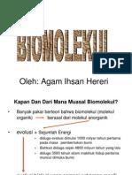 Biomolekul 2