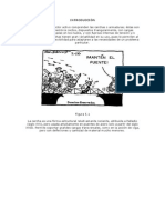 Conceptos BÁsicos Sobre Cerchas(2)