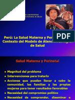 3. Maternidad Saludable y Segura