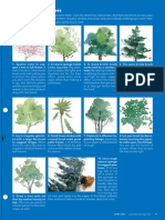 TEchs for painting various trees with examples